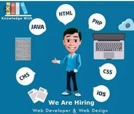 Web developer and designer