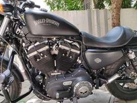 Harley Davidson iron 883 XL