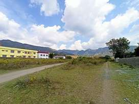 1bigha plot at Nagal Hatnala, 1km from main sahastrdhara road