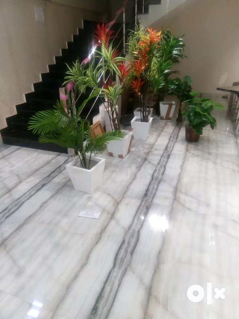 A 5 floor furnished fully commercial showroom in pandri 0