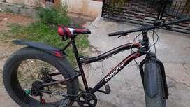 Fat bike with gears