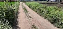 Agricultural land/ Agri land/ coconut farm/ farm land/ farm house