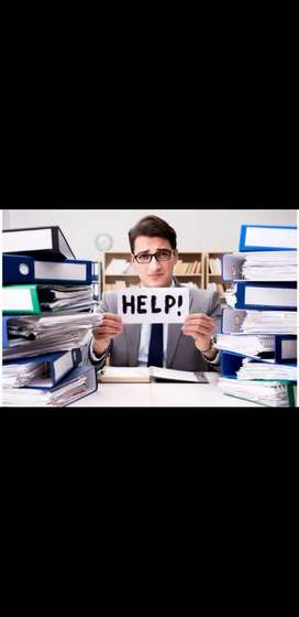 Needed experience holder accountant