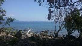 Tanah 11.224 m2 Los Pantai di Maumere, Waigete - Nusa Tenggara Timur