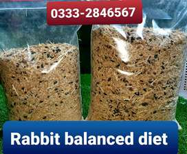 Rabbit special feed