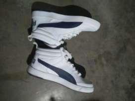 Puma shoe for sale Rs 1500