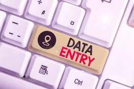 Expert Data Entry Operator