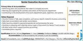 Looking for Sr. Executive - Accounts