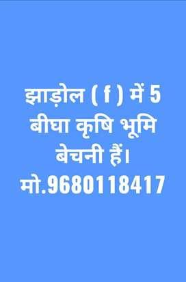 Jhadol (f) me 5 bigha karshi bhumi bikau hai.