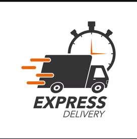Delivery exicutive