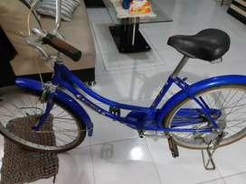 Sepeda Phoenix dewasa