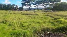 Tanah 1650 pinggir sawah & danau tondano