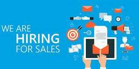 Require Sales Manger for Hospete