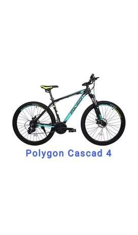 Polygon Cascade 4.0 Sepeda MTB