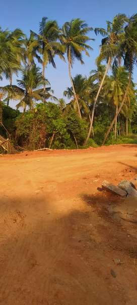 Ashoknagar 4 Cents Muda Approved Property For Sale Rs.20 Lakhs