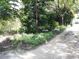 dijual cepat & murah,tanah jl utama simpang tiga kota Pekanbaru