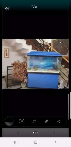 Fish aquarium Best condition
