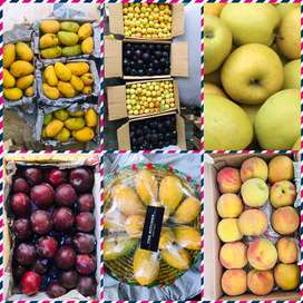 QUALITY FRUITS WITH MONEY BACK GUARANTTE