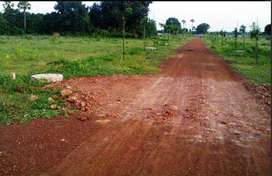 GUDA Approved Budget Friendly Open Sites for Sale 6499 per Sq Yd