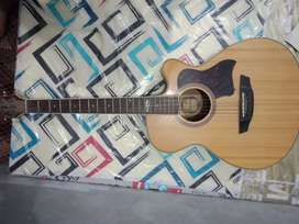 Stringberg guitar