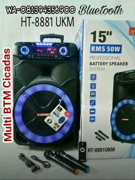 """speaker aktif AC DC 15""""+2 mic wireless+equalizer"""