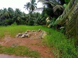 Emty land for rent