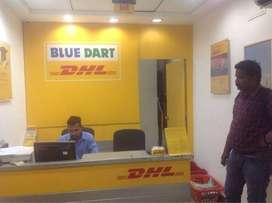 Bluedart process walkin interview in Delhi- BULK Hiring