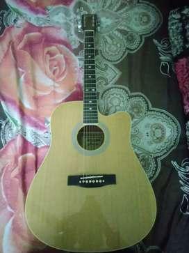 Home guitar classes.
