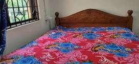 Wooden furnished bed