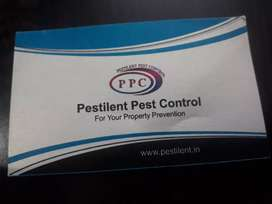 Best pest control service in bareilly for your property prevention