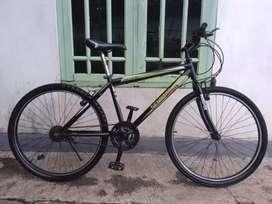 Sepeda senator mantap