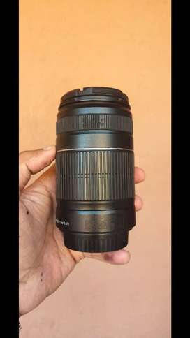 Canon 55 250mm lens