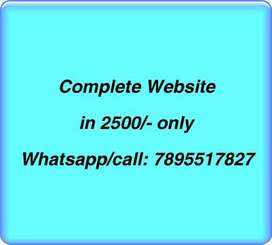 Professional Website at 2500/-,domain & hosting,5 pages,Seo friendly