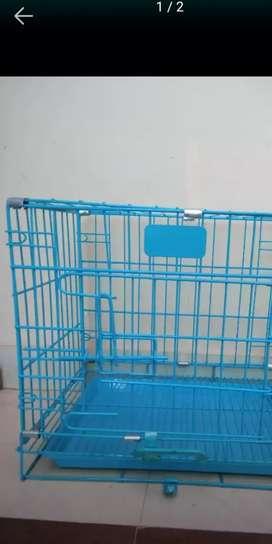 Bird cage with 2 birds