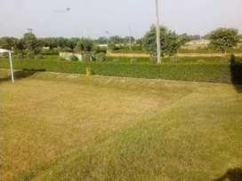 Plot for sale in engineering colony