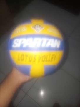 spartan volley ball