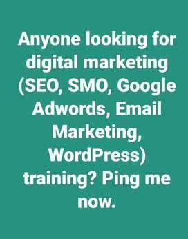 Digital Marketing training (SEO, SMO, Google Adwords, Email Marketing)