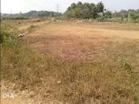 5 cents of land @ Edathara Palakkad