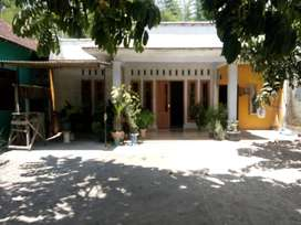 Rumah Daerah Blitar Halaman Luas
