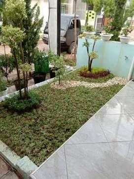 Tanaman Hias   dan Penataan Taman Makassar