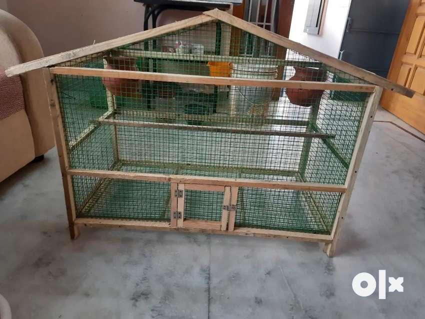 Birds Cage New 0