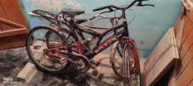 Milton sports cycle in good condition