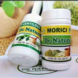 Obat De Nature Untuk Strok Struk