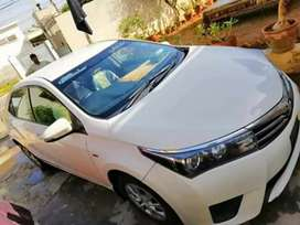 Royal city rent a car Service in city or out city