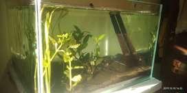 10 days used aquarium extra clear glass , 2*2*1.5