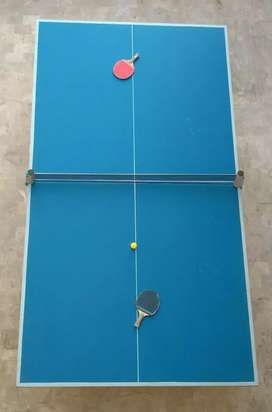FOLDABLE MODERN TABLE TENNIS TABLE WITH NET AND RACKETS