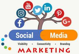 Are you Looking Web Development and social Media Marketing Call us