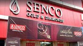 URGENT JOINING IN SENCO GOLD OFFICE EXECUTIVE JOB CALL NOW 82828,13446
