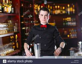 Experienced Bartenders looking for RestroBar in Bangalore