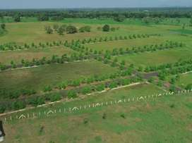 Open plots 500mts from 6line highway